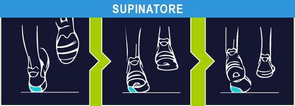test pronatore o supinatore
